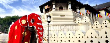 THE LAST KINGDOM OF SRI LANKA 2/3